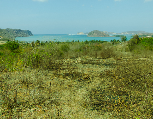 Buy Bumbang land for sale. Bumbang Hill Ocean View Overlooking Gerupuk Bay with world class surf spots and surf camp