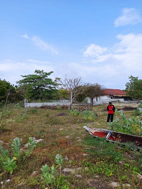 Buy Bumbang land for sale. Bumbang Beachfront Gerupuk Bay with world class surf spots and surf camp